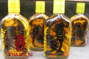 Giảm 90% cho dòng sản phẩm rượu ngâm bọ cạp