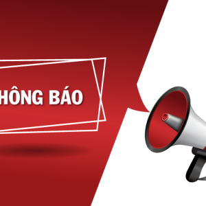 Thông báo hàng mới về CỦ BA KÍCH TÍM Quảng Ninh - củ siêu to lõi tím tại Hà Nội